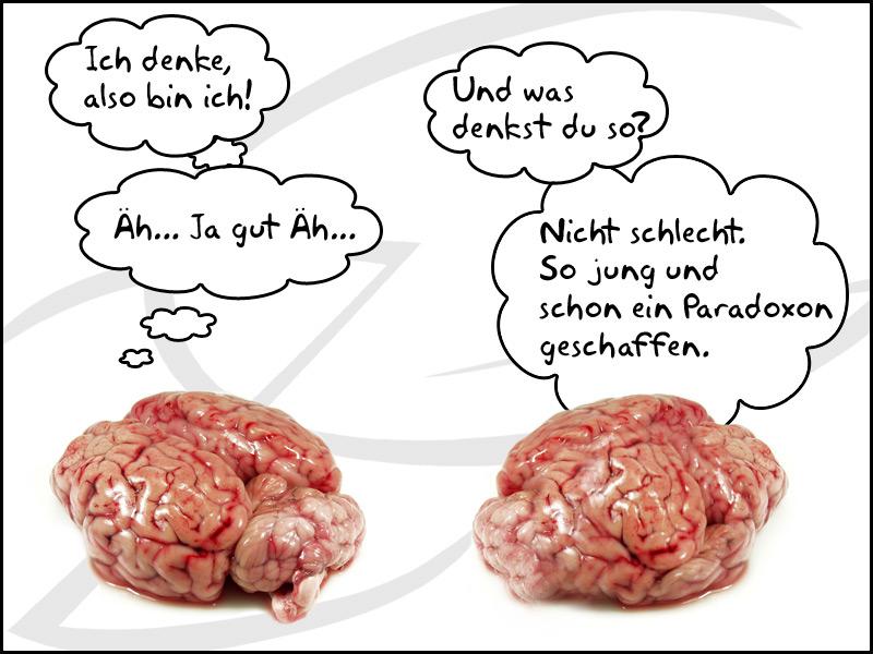 Gehirn | ZG Blog