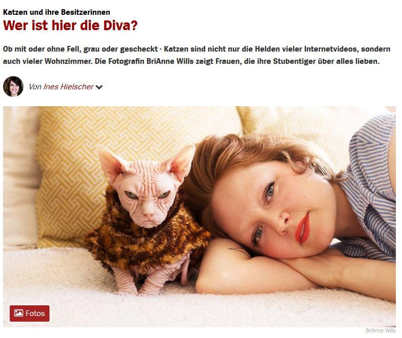 Cat Content auf Spiegel Online vom 29. August 2017